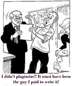 I didn't plagiarise